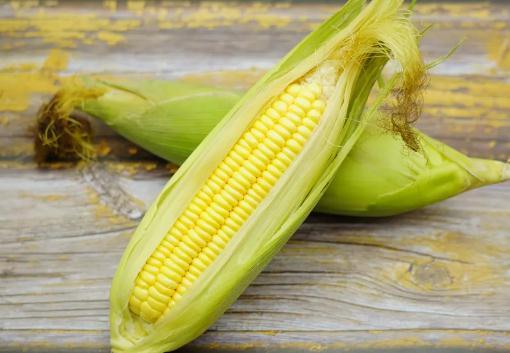 玉米煮多久就熟了?冷水下锅的玉米煮多久最好吃