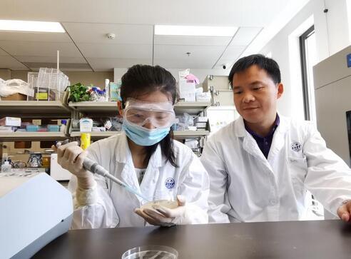 近日,上海分子医学研究院刘尽尧课题组在《先进材料》杂志发表研究论文