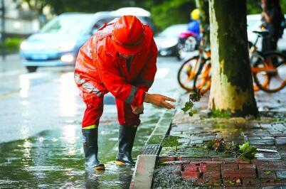 """台风""""黑格比""""本体已远离申城,10万余人次应急值守"""